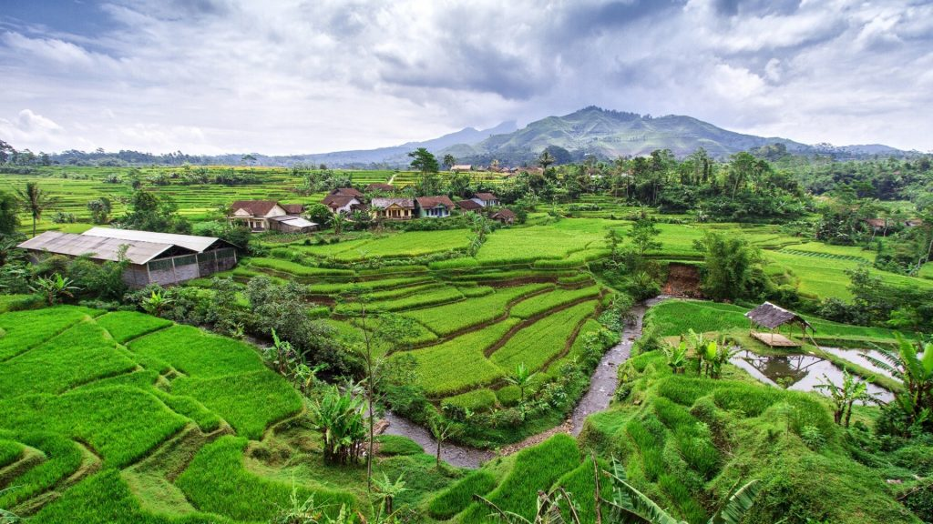 indonesia-frequently-asked-question